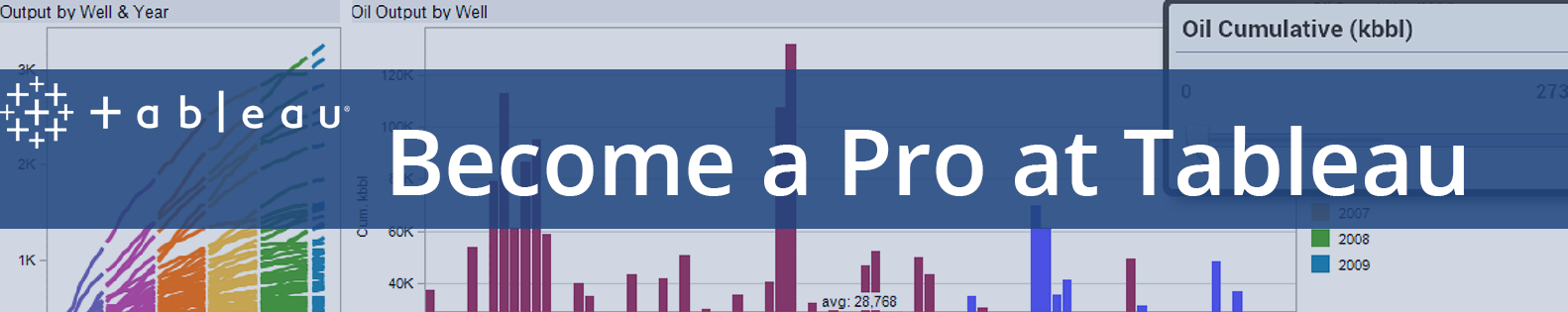 Become a Pro, Learn Tableau!