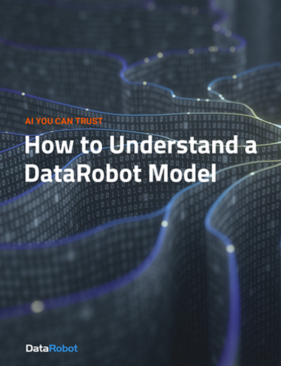How to Understand a DataRobot Model Image